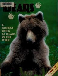 Cover of: Bears | Joni Phelps Hunt
