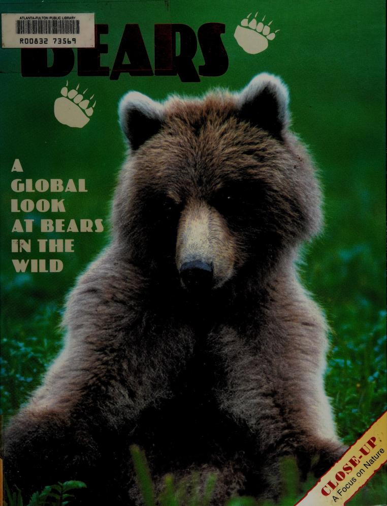 Bears by Joni Phelps Hunt
