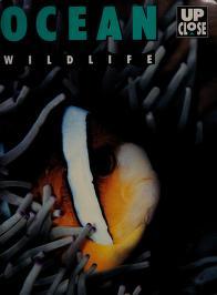 Cover of: Ocean wildlife   Jinny Johnson